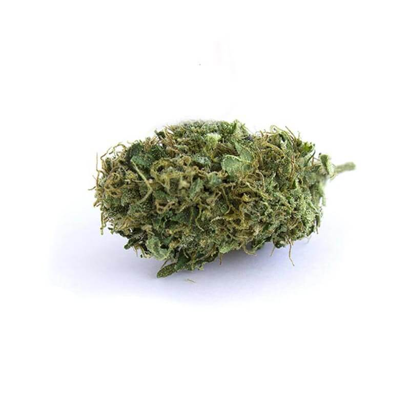 Grossiste-cbd-Belgique-2BeHemp-Amnesia-Haze