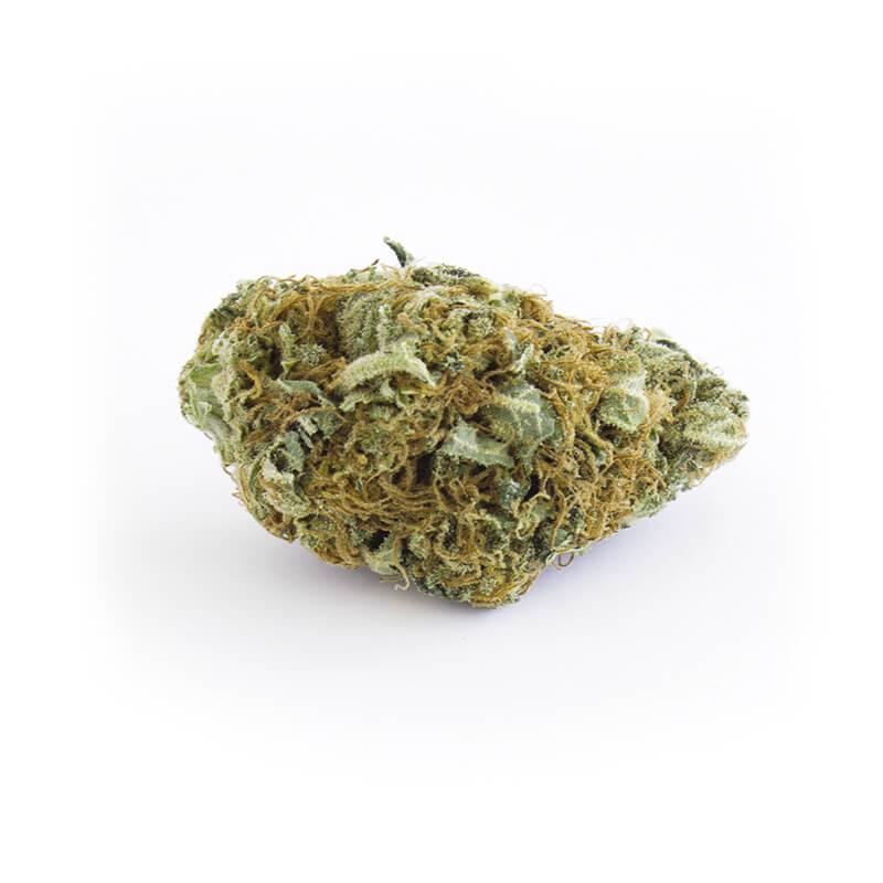 gorilla-glue-cbd-legal-en-gros-belgique-2behemp