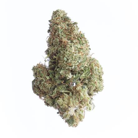 cbd-grossiste-cannabis-jaskherer